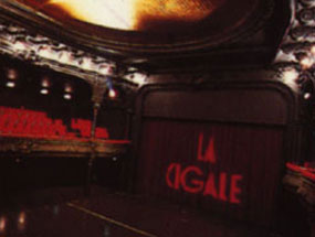La Cigale - Paris - JOHNNY HALLYDAY
